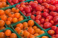 Cherry Tomatoes am Markt eines Landwirts lizenzfreie stockfotos