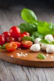 Cherry tomatoes with mozzarella Stock Photography