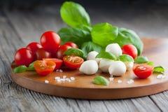 Cherry tomatoes with mozzarella Stock Image