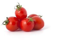 Cherry Tomatoes-Nahaufnahme Lizenzfreies Stockbild