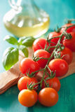 Cherry tomatoes and olive oil over turquoise background Stock Photos
