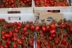 Cherry Tomatoes op Wijnstokken in een Markt in Italië Stock Afbeelding
