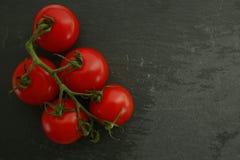 Cherry Tomatoes organico rosso Fotografia Stock Libera da Diritti