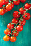Cherry tomatoes over turquoise background Stock Photos