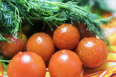 6 Cherry tomatoes with parsley and dill. 6 fresh cherry tomatoes covered with water droplets lying on an orange plate with parsley and dill. Health food concept Stock Illustration