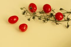 Fresh egetables concept. Cherry tomatoes on pastel background. Copy space stock image