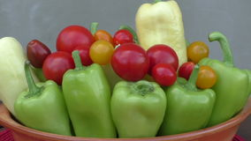 Cherry tomatoes and peppers in bowl stock video