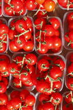 Cherry tomatoes in plastic bowls. On a market stall stock image