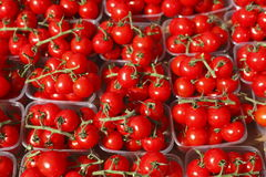 Cherry tomatoes in plastic bowls. On a market stall stock photography