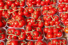 Cherry tomatoes in plastic bowls. On a market stall stock images