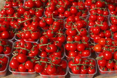 Cherry tomatoes in plastic bowls. On a market stall royalty free stock photo