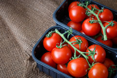 Cherry tomatoes in a plastic container Royalty Free Stock Photo