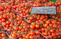Cherry tomatoes on Provnece market Stock Photos