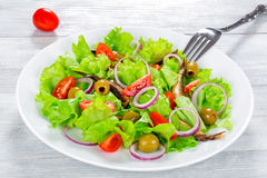 Cherry tomatoes, red onion, green olives, lettuce leaves, smoked Stock Images