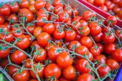Cherry Tomatoes Red Ripe Market Stock Photo