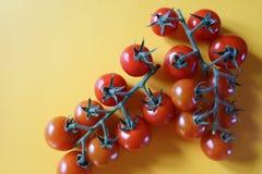 Cherry Tomatoes rouge juteux délicieux sur la vigne sur le fond jaune lumineux image libre de droits