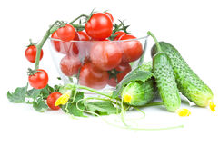 Cherry tomatoes in a salad bowl and cucumber Royalty Free Stock Image
