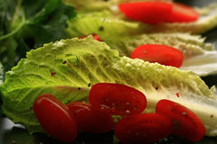 Cherry tomatoes and salad texture Stock Photo