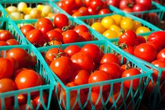 Cherry Tomatoes. For Sale at the Farmers Market Stock Photos
