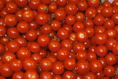 Cherry tomatoes. Shiny cherry tomato fruit on an open air market fruit and vegetable stall Royalty Free Stock Image