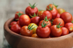 Cherry Tomatoes in a small backet Royalty Free Stock Photos