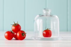 Cherry Tomatoes. Some cherry tomatoes and a glass bell jar on a white wooden table with a robin egg blue background. Vintage Style Stock Photo