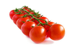 Cherry tomatoes on a stalk. Royalty Free Stock Photo