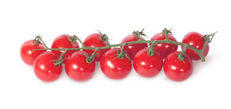 Cherry tomatoes on the stem Royalty Free Stock Photography
