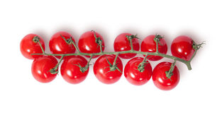Cherry tomatoes on the stem top view Stock Image