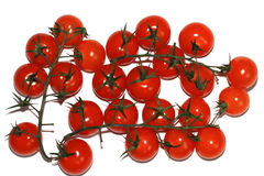 Cherry tomatoes on the stem Stock Photo