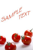 Cherry tomatoes with text space Royalty Free Stock Images