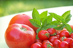 Cherry tomatoes and tomatoes close-up Royalty Free Stock Photos