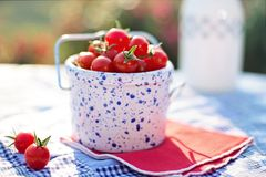Cherry Tomatoes, Tomatoes, Ripe Stock Photos
