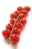 Cherry Tomatoes on a Vine royalty free stock images