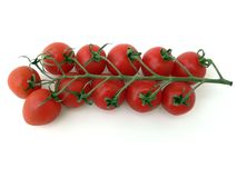 Cherry Tomatoes on Vine. A vine of cherry tomatoes on a white background Royalty Free Stock Image