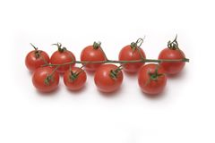Cherry tomatoes on a vine Royalty Free Stock Photography