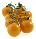 Cherry tomatoes on vine. Royalty Free Stock Photography