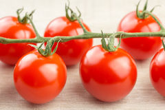 Cherry tomatoes on the vine Royalty Free Stock Photo