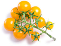 Cherry tomatoes on vine, paths Stock Photo
