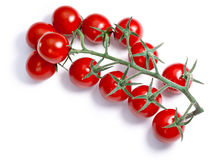 Cherry tomatoes on vine, paths Royalty Free Stock Images