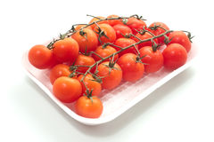 Cherry tomatoes on vine with water drops. Royalty Free Stock Photo