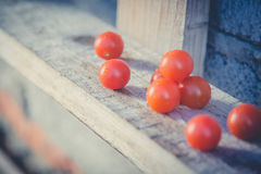 Cherry tomatoes, vintage photos, scattered tomatoes Royalty Free Stock Photos