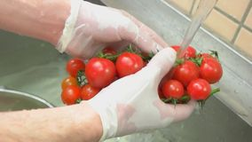Cherry tomatoes and water. Ripe vegetable close up stock video