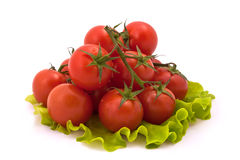 Cherry Tomatoes  on White Background. Cherry Tomatoes on Salad Leaves  on White Background Royalty Free Stock Images