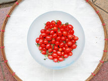 Cherry Tomatoes in white bowl against white sack threshing basket Royalty Free Stock Photography