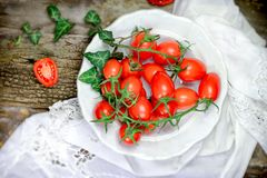 Cherry tomatoes in white plate. On rustic table Stock Image