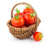 Cherry tomatoes in the wicker basket Stock Photos