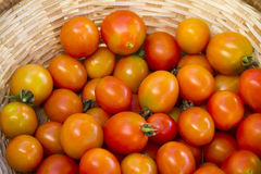 Cherry tomatoes in wicker basket. In a market Royalty Free Stock Photography