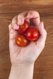 Cherry tomatoes in a womans palm. Royalty Free Stock Photo