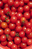 Closeup of Ripe Cherry Tomatoes Royalty Free Stock Images